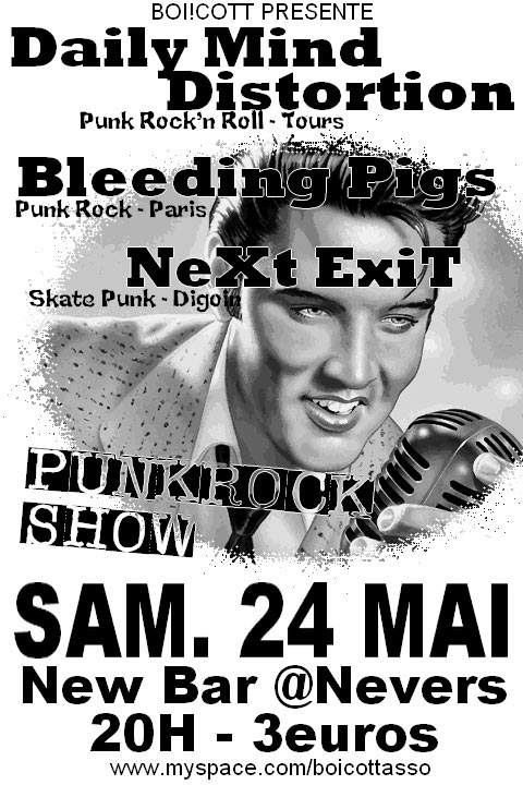 Punk Rock Show au New Bar le 24 mai 2008 à Nevers (58)