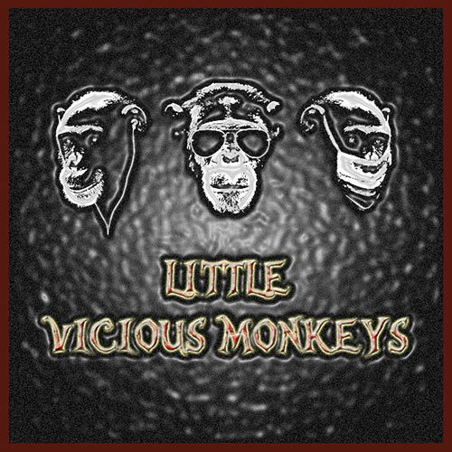 Little Vicious Monkeys au V&B le 08 décembre 2017 à Avignon (84)